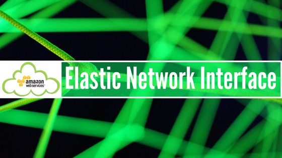 Introduction to Elastic Network Interface - Whizlabs Blog
