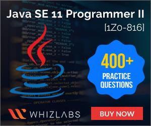 1Z0-816 Practice Tests