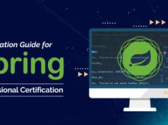 Spring Professional Certification Preparation
