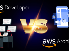 AWS Developer vs AWS Architect