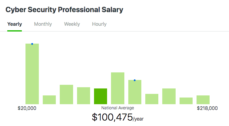 cyber security professional salary