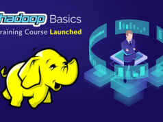 Hadoop Basics Training Course