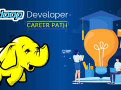 Hadoop Developer Career Path