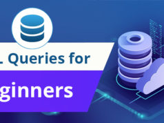SQL Queries for Beginners