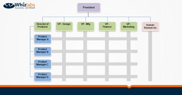 Matrix Organizational Structure A Complete Guide Whizlabs Blog
