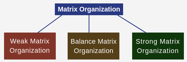 Matrix Organization