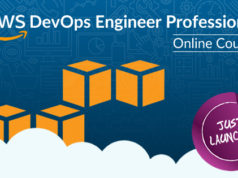 AWS DevOps Engineer Professional Online Course