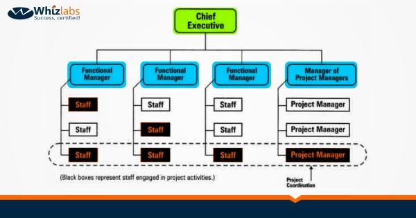 3.2 Functional Organization