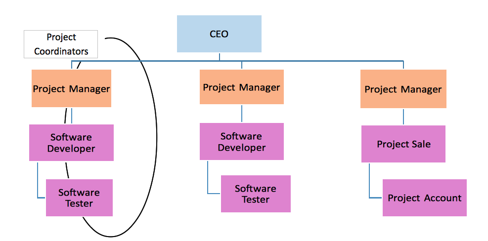 projectized organization In projectized organization structure , the whole company is organized by  projects rather than functional teams or departments the project.