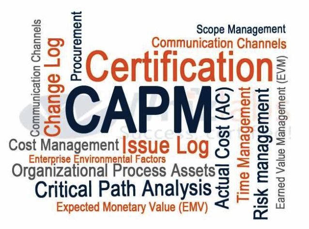PMI ACP Certification Exam: Get ACP Certified by PMI