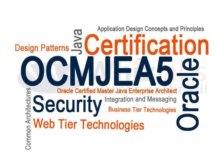 ocmjea 5  sun certified enterprise architect