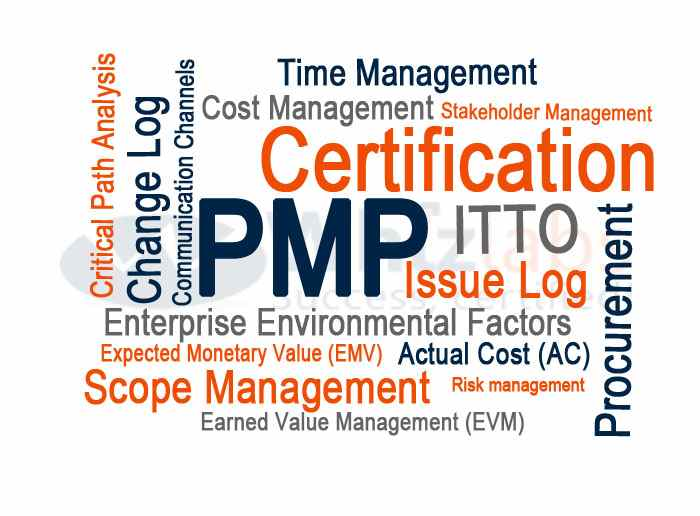 Project Management Professional (PMP®) Certification