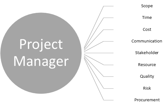 Different dimensions of Project Manager