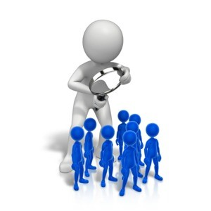 PMI-RMP Audit Process