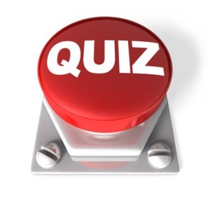 importance of quiz on each risk management domain